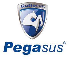 logo_pegasus